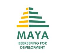 Miel Maya Honing